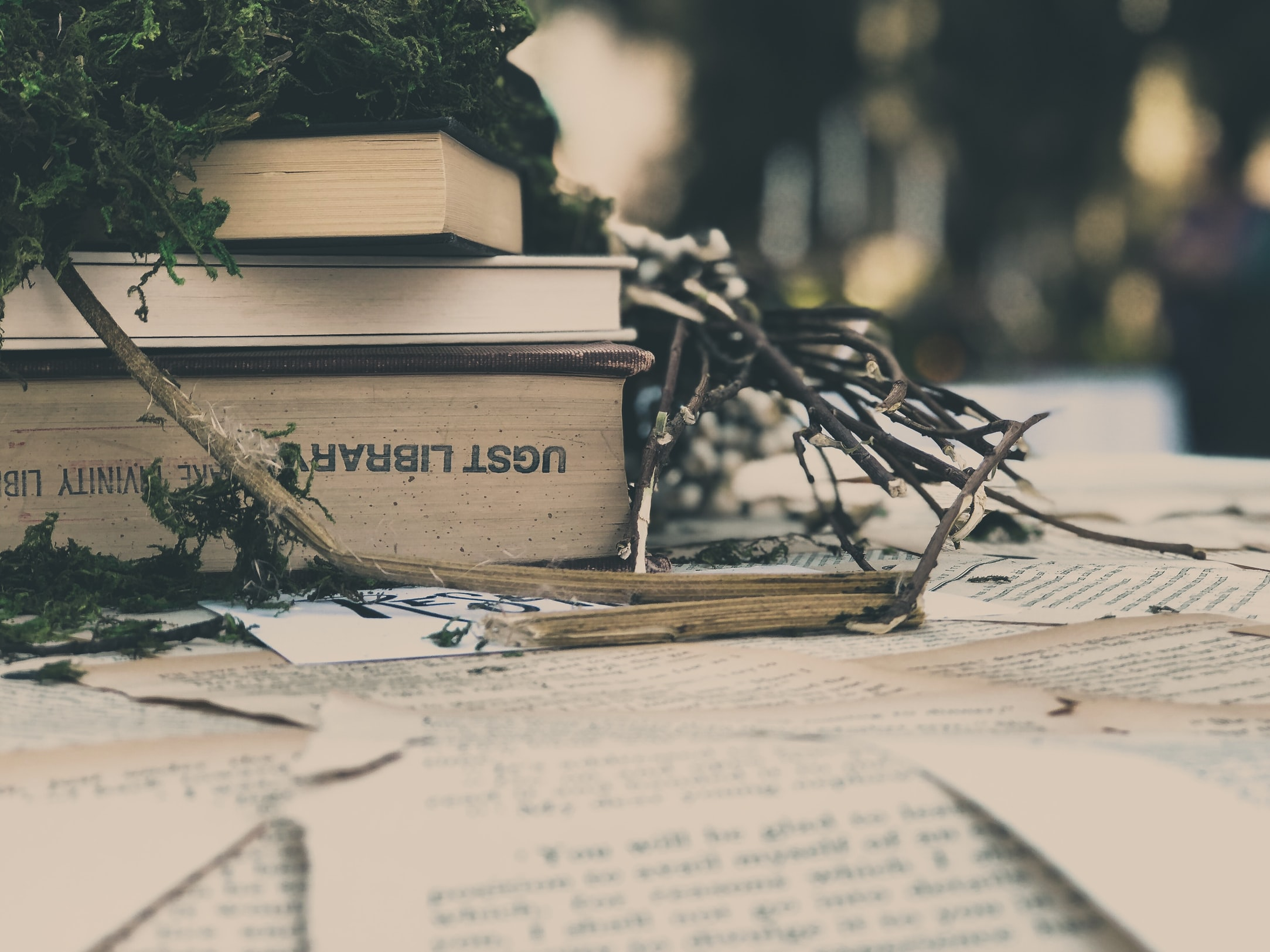 ado lecture lire