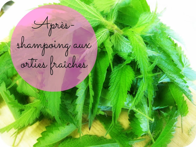 après-shampoing-fortifiant-aux-orties