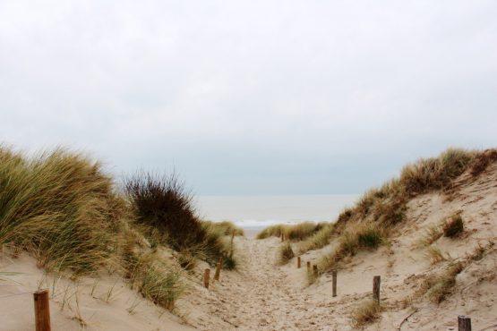 la plage d'ostende le livre